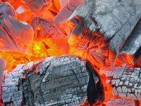 Биоэнергетика Древесный уголь