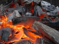 Продаем древесный уголь
